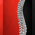 Memento Mori - Silver Human Backbone Over Red And Black Canvas by Serge Averbukh
