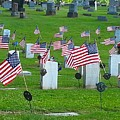 Memorial Day Salute by Shelly Dixon