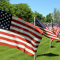 Memorial Day Tribute by Steve Gass
