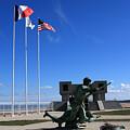 Memorial To The Fallen Soldier by Aidan Moran