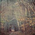 Memory Lane 2 by Diane Moore
