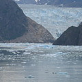 Mendenhall Glacier  Alaska by Barb Morton