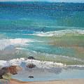 Mendocino Coast-ocean View by Suzanne Cerny
