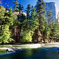 Merced River With The El Capitan Yosemite  National Park California by George Oze