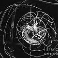 Mercury Program, Mastif Astronaut by Science Source