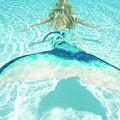 Mermaid Escape 2 by Steve Williams