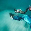 Mermaid Friends by Leonardo Dale