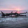 Mermaid In The Surf by Debra and Dave Vanderlaan