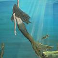Mermaid Of Weeki Wachee by Kris Crollard