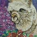 Merry Christmas Alpaca by Patty Sjolin