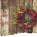 Merry Christmas. by Kelly Nelson