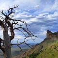 Mesa Verde Mood by Skip Hunt