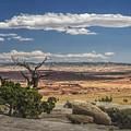 Mesa View In Utah by Randall Nyhof