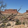 Mesas Near Moab by Belinda Greb