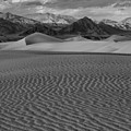 Mesquite Dunes Black And White by Adam Jewell