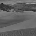 Mesquite Sand Dunes Black And White Panorama by Adam Jewell