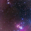 Messier 78 & Horsehead Nebula In Orion by Alan Dyer