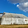 Metal Barn by Rancher's Eye Photography