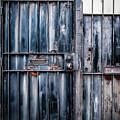 Metal Gates by Kathleen K Parker