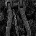 Metal Links by Jim Corwin