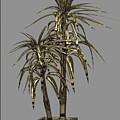 Metal Plant In Pot 13 by Pemaro