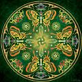 Metamorphosis Mandala by Cristina McAllister