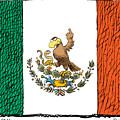 Mexico Flips Bird by Daryl Cagle