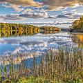 Mi Stoney Creek by LeeAnn McLaneGoetz McLaneGoetzStudioLLCcom