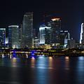Miami Downtown Skyline by Raul Rodriguez