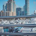 Miami Marina by Claudia M Photography