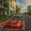 Miami Ride by Phyllis Webster