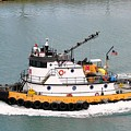 Miami Tug by Margaret Bobb