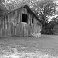 Micanopy Barn by Warren Thompson