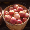 Michigan Apples by Wayne Potrafka