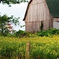 Michigan Barn by Michael Peychich