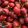 Michigan Cherries by Allan  Hughes