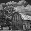 Michigan Old Wooden Barn by Randall Nyhof