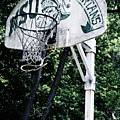 Michigan State Practice Hoop by Michelle Calkins