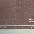 Michigan State University Skandalaris Football Center Signage by Thomas Woolworth