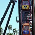 Mickey Donald Ferris Wheel California  by Chuck Kuhn