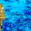 Microphone On Blues Fire by Bigalbaloo Stock