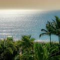 Mid-beach Miami-3 by Frank Mari