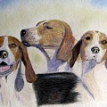 Middleburg Hounds by Angela Davies