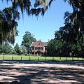 Middleton Plantation Charleston Sc by Susanne Van Hulst