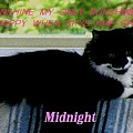 Midnight by Crystal Webb