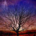 Midnight Hour by Hugh Davis