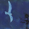 Midnight by Manuel Sueess