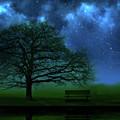 Midnight by Mark Rogan