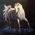 Midnight Prance by Glenda Smith
