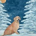 Midnight Snow by Tammy Brown